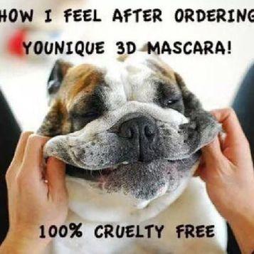 cruelty free bulldog