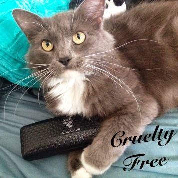 cruelty free cat