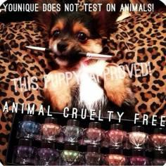 cruelty free pup