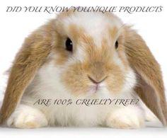 cruetly free rabbit