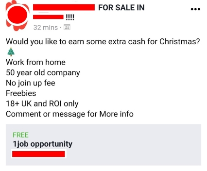 Christmas Earn Extra Cash EDITED