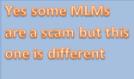 mlmbingo mine is different
